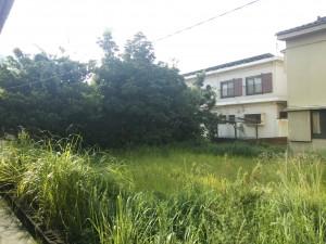 2014-09-11-08-02-14_photo