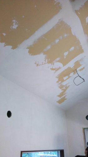 ひとりで塗れるもんDIY天井塗り傾斜天井